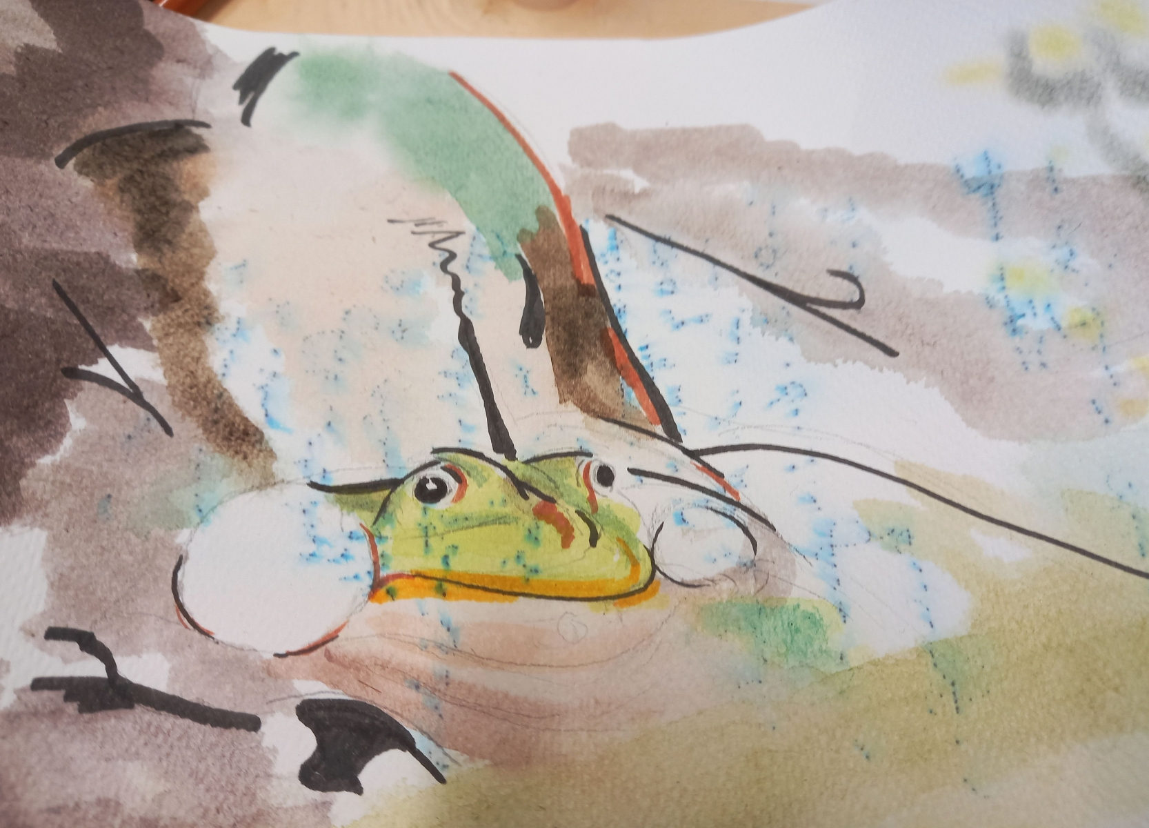 Froschbriefe
